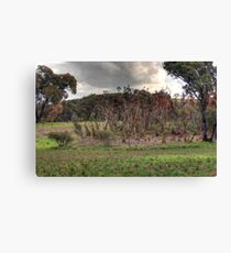 Salty plains Canvas Print