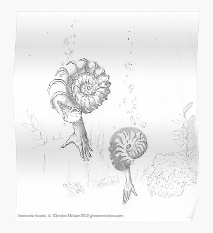 Ammonite Hands Poster