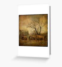 drapé dans les ors de l'automne... Greeting Card