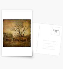 drapé dans les ors de l'automne... Postcards