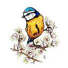 Blaumeise mit Kirschblüten von camarocaro