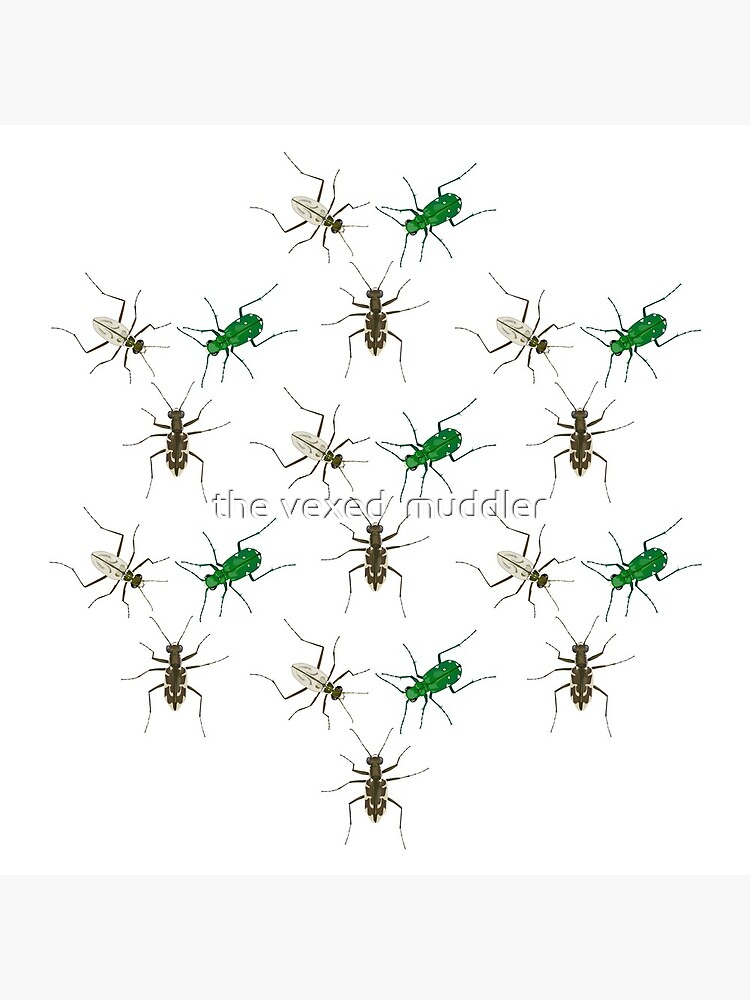 Tiger Beetle Pattern by thevexedmuddler