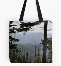 View From Clingmans Dome Tote Bag