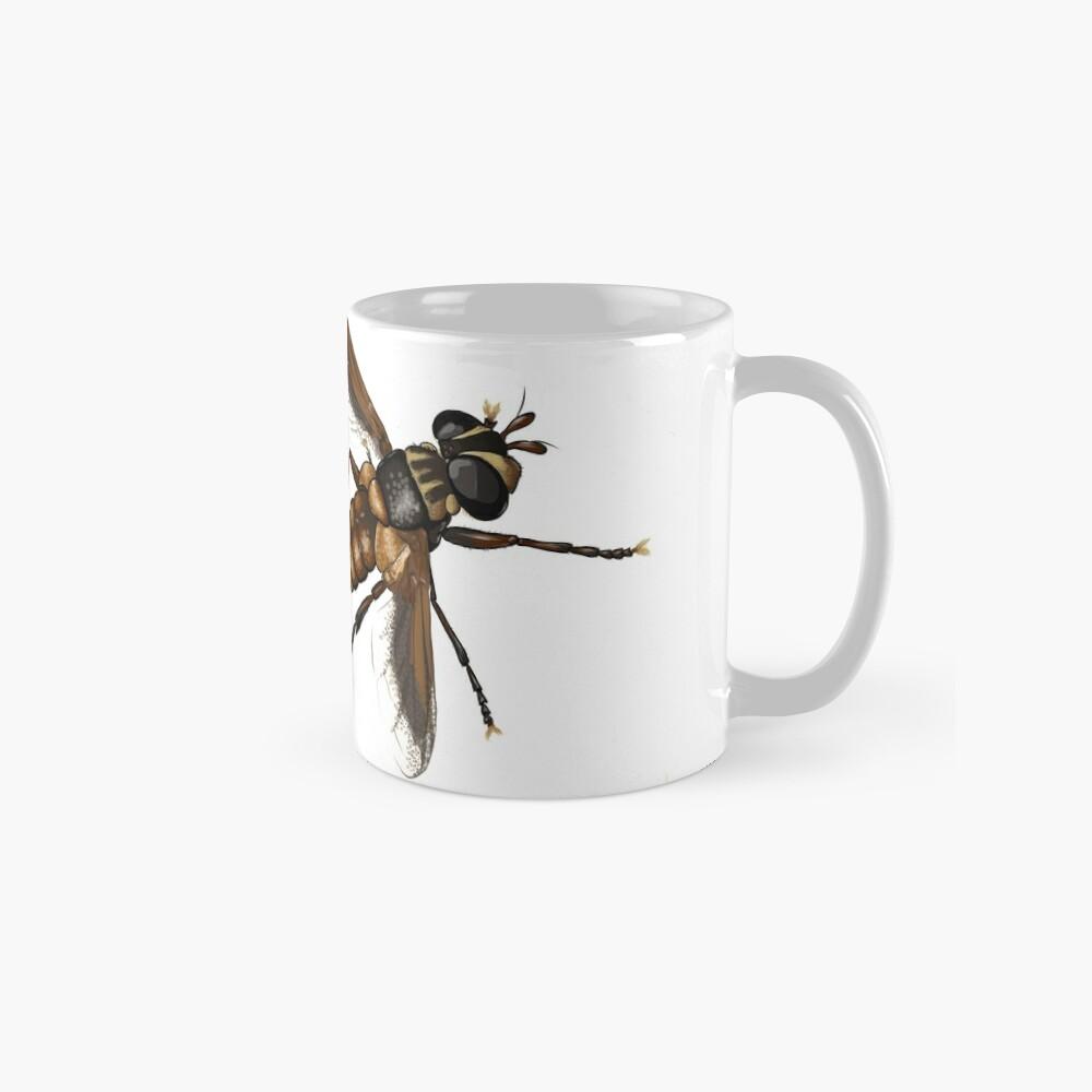 Feather-legged fly - Trichopoda subdivisa Mug