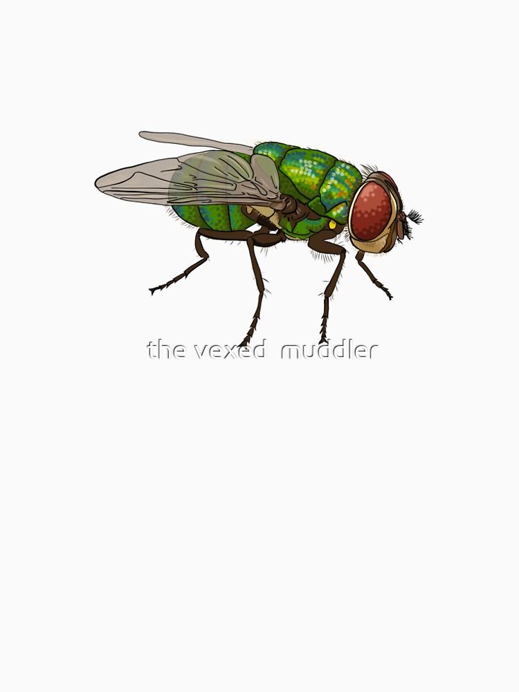 Chrysomya megacephala blowfly by thevexedmuddler