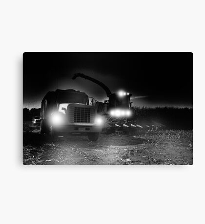 night harvest ? Canvas Print