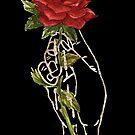 Rose - Gilded Hand Series - Dark by Catherine Herold