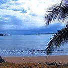 Bocas Del Toro Beach by Al Bourassa