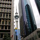 Sky Tower by Stecar