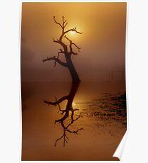 """Dawn Shroud"" Poster"