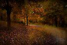Autumn Walk  by Elaine Manley