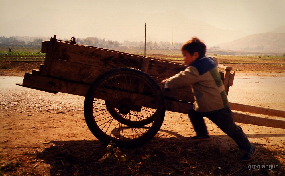 the youngest farmer by greg angus
