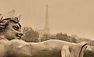 Seine Spirit by Nigel Fletcher-Jones