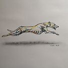 Running Greyhound Biro Portrait Scribble Pets by Pasha by goddamnmedia
