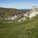 Winding track through limestone country by Belinda Osgood