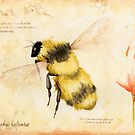 Bee by Watercolor Naturalist