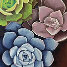 Succulents by Watercolor Naturalist