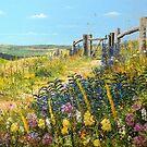 The Butterfly Path  by Paula Oakley