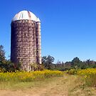 Chisolm Mission Silo by Dan McKenzie
