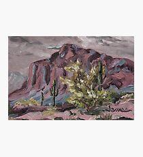 A Desert Scene, too - oil paint Photographic Print