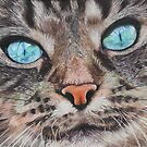 Mia the Maine Coon cat by cathyscreations