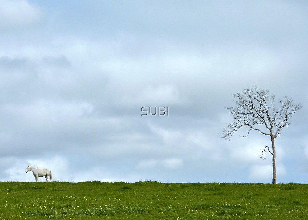horse and tree by SUBI