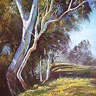'River Bank Bends' by Lynda Robinson