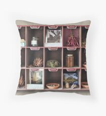 A Curious Collection, trompe loeil  Throw Pillow
