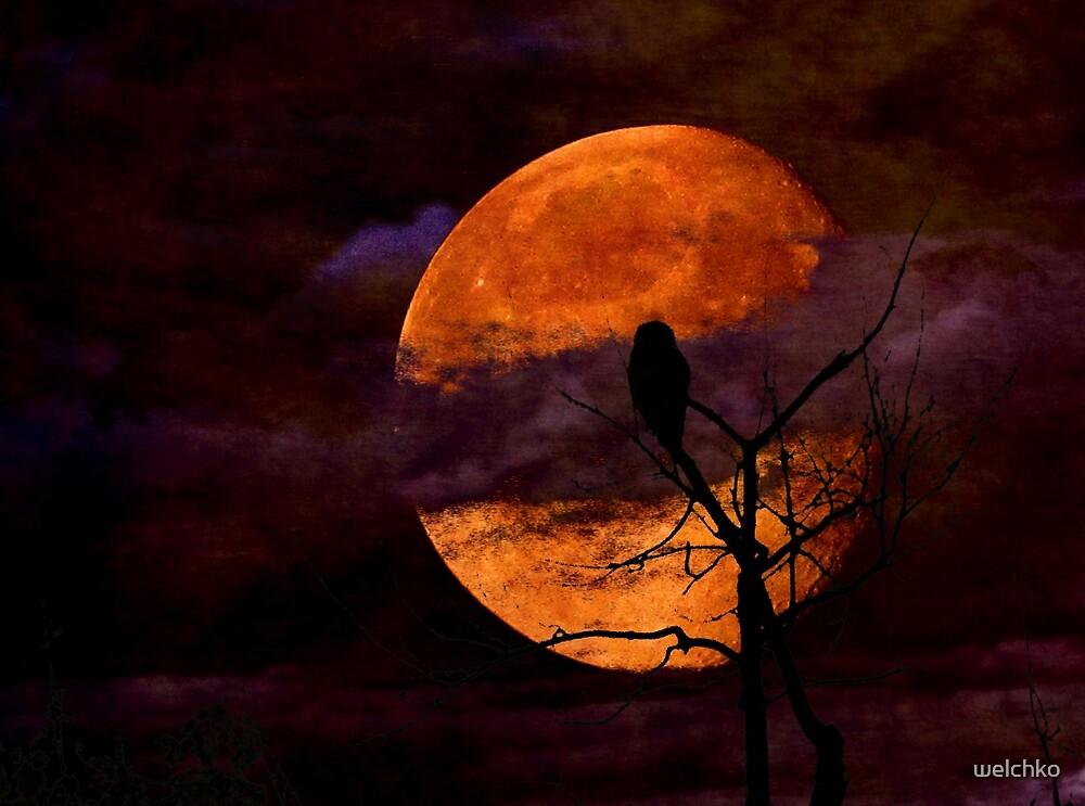 Harvest Moon Rising by welchko