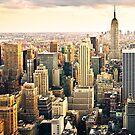 Skyline of Manhattan, NYC by danwa