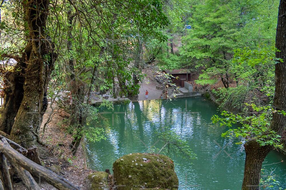 Petaloudes Pond by Tom Gomez