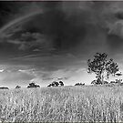 Rainbow Panorama by Kym Howard