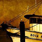 Rosa Marie by Susanne Van Hulst