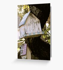 Forgotten Birdhouses Greeting Card