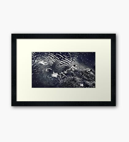 Rhythm #2 - Standing,  Splash, Swimming and Jump to Land Framed Print