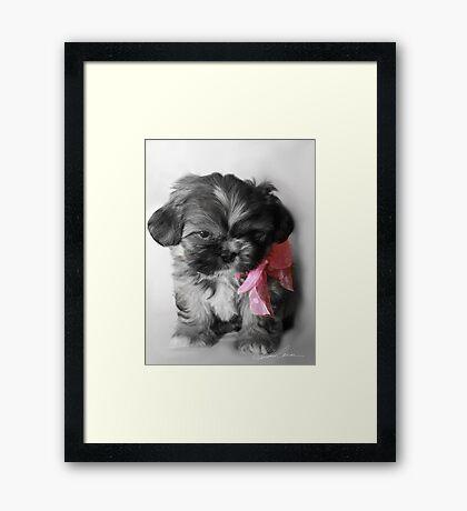 Princess Bell Framed Print