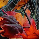 Imitation Fall by duncandragon