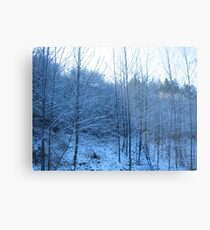 Snowy Trees Metal Print