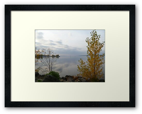 Looking out onto the Ottawa River by Vicki Spindler (VHS Photography)