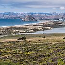 Morro Bay by Mike Herdering