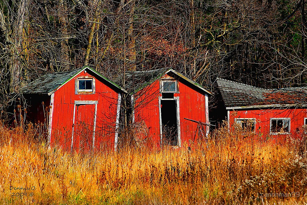 """"""" Barn Town Trio """" by canonman99"""