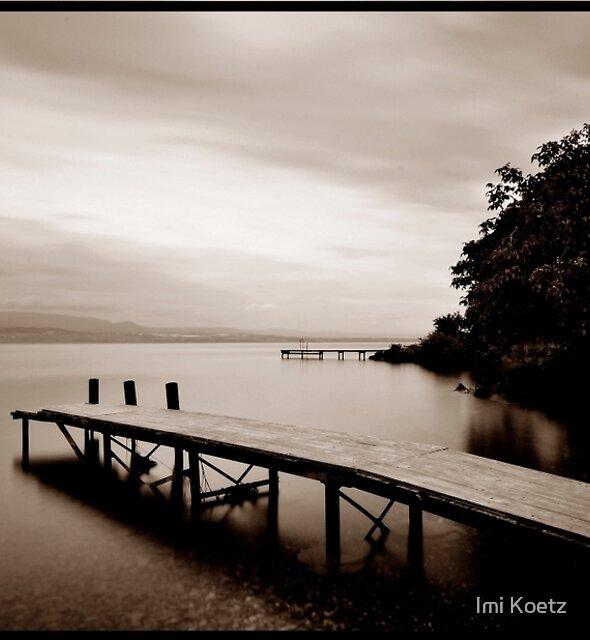 Old Jetties.........Lake Geneva...........France by Imi Koetz
