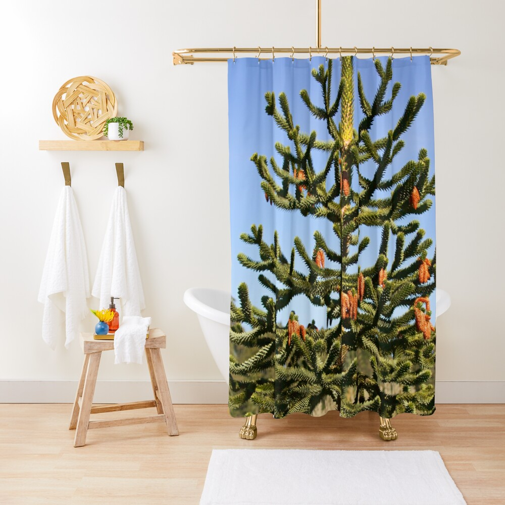 Wollemi Pine - Ancient Tree Shower Curtain