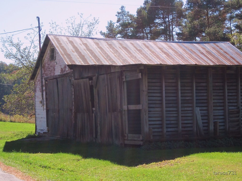 An Old Shed by teresa731