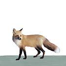Fuchs auf Salbei von Amy Hamilton