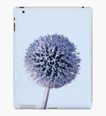 Monochrome - Starry night on the thistle globe iPad Case/Skin