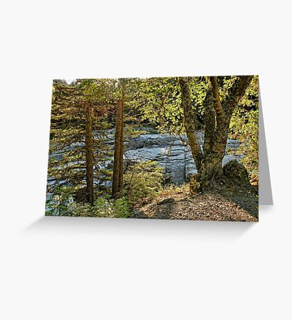 Glacier Autumn 2 (MacDonald Creek) Greeting Card