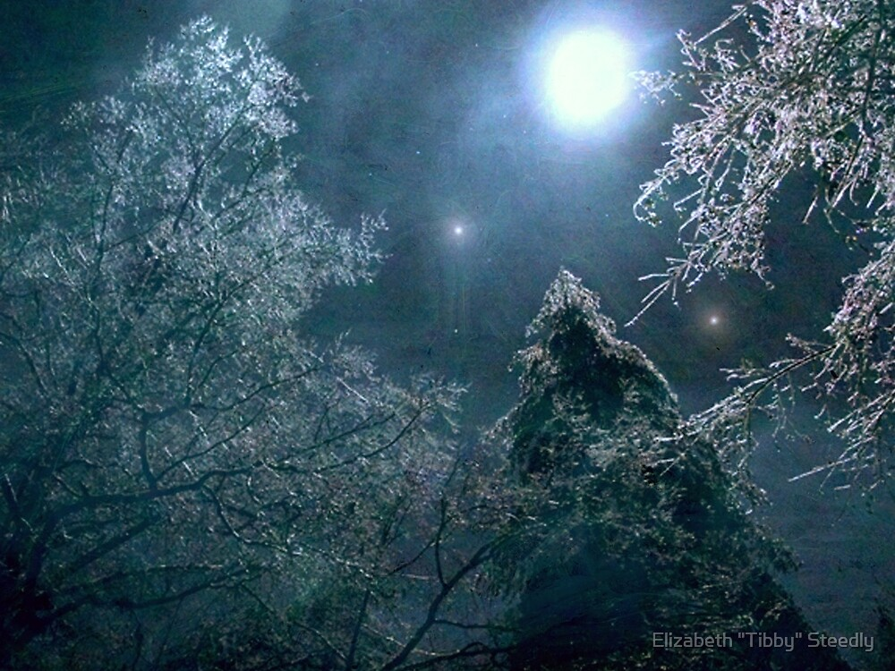 Moon Dance by Tibby Steedly
