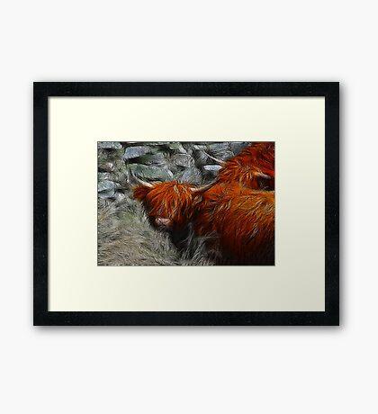 Fractalius Bulls #2 Framed Print