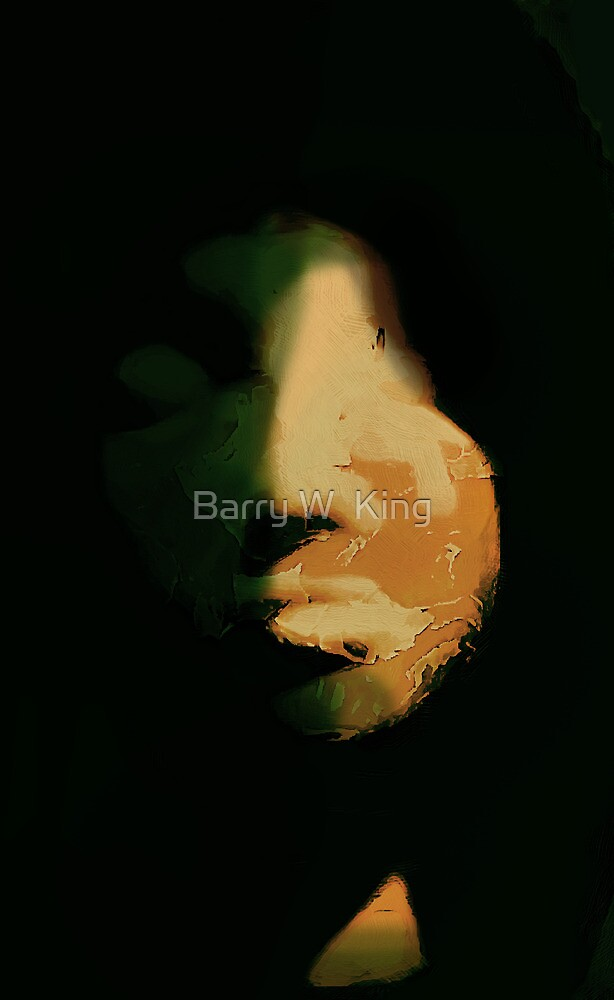 Darkness by Barry W  King